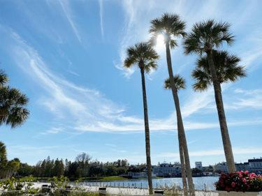 【そもそもフロリダってどんなところ?】時差|対応言語|チップについて