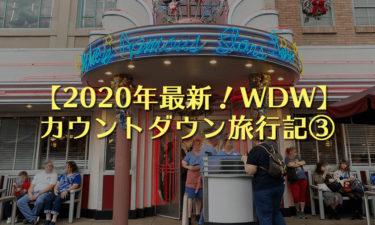 【2020年】ディズニーワールド(WDW)カウントダウン旅行記③|パークホッパーで朝6時から3パークを渡り歩き!?