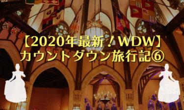 【2020年】ディズニーワールド(WDW)カウントダウン旅行記⑥|年明けはのんびり2パークを満喫!アウトレットやシンデレラのロイヤルテーブルも♡